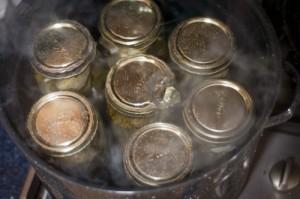 pickles-in-bath-e1280369797226